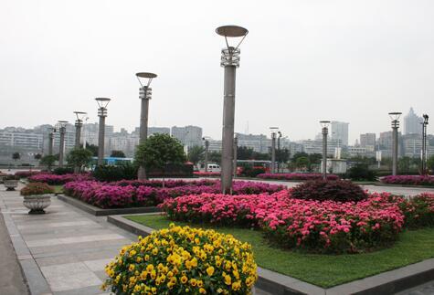 内江师范雷火电竞亚洲