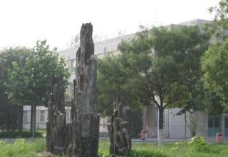 北京科技经营管理雷火电竞亚洲